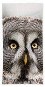 The Great Grey Owl  Beach Towel