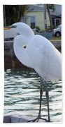 The Great White Egret Beach Towel