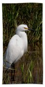 The Great White Heron Beach Towel