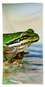 The Green Frog Beach Towel by Robert Bales