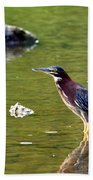 The Green Heron Beach Towel