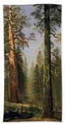 The Grizzly Giant Sequoia Mariposa Grove California Beach Towel