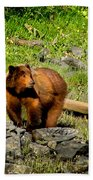 The Grizzly Beach Towel