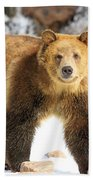 The Grizzly Strut Beach Towel
