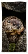 The Groundhog Beach Towel