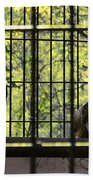 The Hawks From The Series The Imprint Of Man In Nature Beach Towel