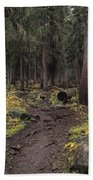 The High Forest Beach Towel by Eric Glaser