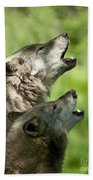 The Howling Beach Towel
