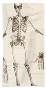The Human Skeleton Beach Towel