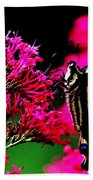 The Hungry Butterfly Beach Towel