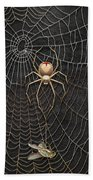 The Hunter And Its Pray - A Gold Fly Caught By A Gold Spider Beach Towel