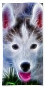 The Huskie Pup Beach Towel by Bill Cannon