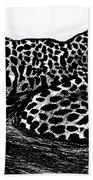 The Jaguar  Beach Towel