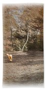 The Labradoodle On The Go Beach Towel