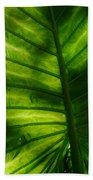 The Leaf Beach Towel