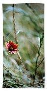 The Lonely Flower Beach Towel