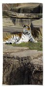 The Lounging Tiger 2 Beach Towel