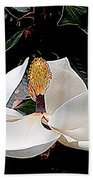New Orleans Metamorphous Of The Southern Magnolia Spring Equinox In Louisiana Beach Towel