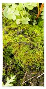 The Miniature World Of The Moss Beach Towel