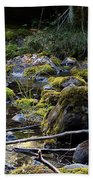 The Moss In The River Stones Beach Towel