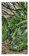The Mossy Creatures Of The Old Beech Forest Beach Towel