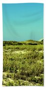 The Nesting Grounds  Beach Towel
