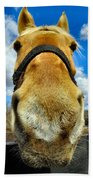 The Nose Knows Beach Towel