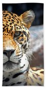 The Ole Leopard Don't Change His Spots Beach Towel
