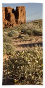 The Outcropping Beach Towel