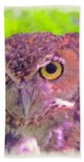 The Owl... Beach Towel