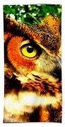 The Owl's Eye Beach Towel