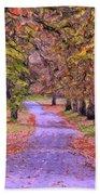The Park In Autumn Beach Towel