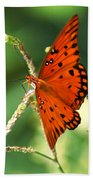The Passion Butterfly Beach Towel