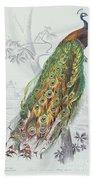 The Peacock Beach Towel by A Fournier