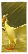 The Pelican Lands Beach Towel