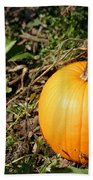 The Perfect Pumpkin In The Patch Beach Towel
