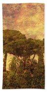 The Pines Of Rome Beach Towel