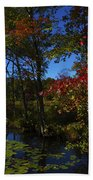 The Pond In Autumn Beach Towel