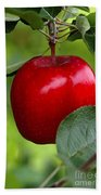 The Red Apple Beach Towel