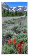 The Road Into Lundy Canyon Beach Towel