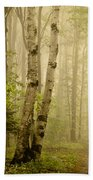 The Road Through The Woods Beach Towel