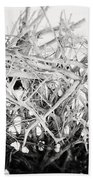 The Roots In Black And White Beach Towel by Lisa Russo