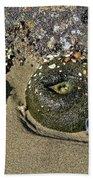 The Sand Box Beach Towel