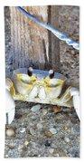 The Sandcrab - Seeking Shelter Beach Towel
