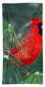 The Santa Bird Beach Towel