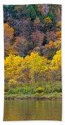 The Season Of Yellow Leaves Beach Towel