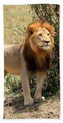 King Of The Savannah Beach Towel