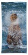 The Shake Beach Towel