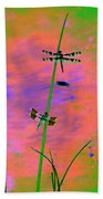 The Skimmer And The Whitetail Art #1 Beach Towel