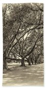 The Southern Way Sepia Beach Towel